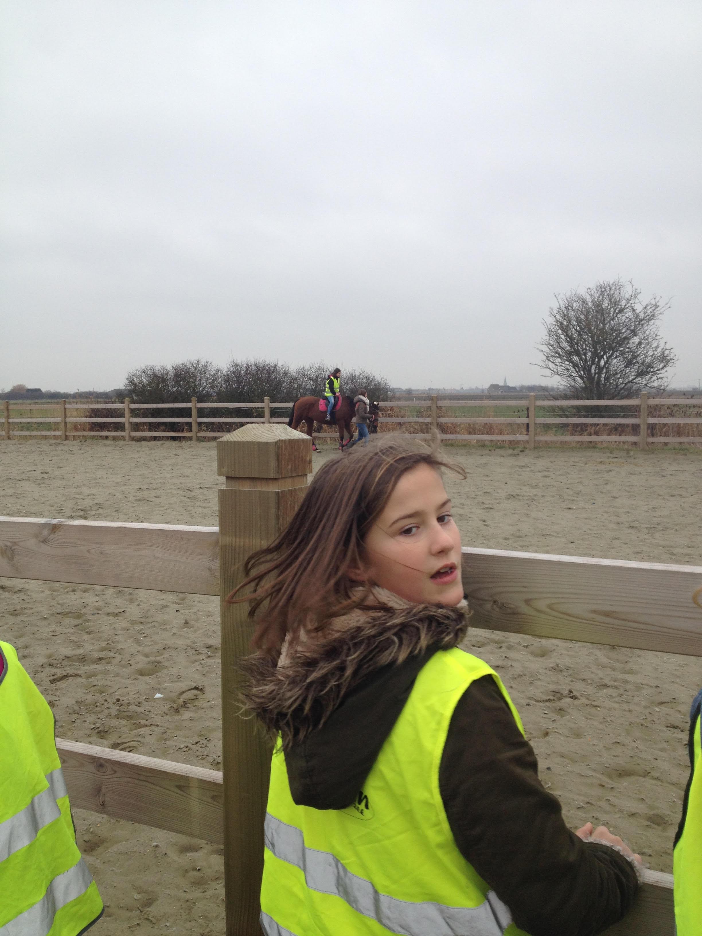 Paardrijden11
