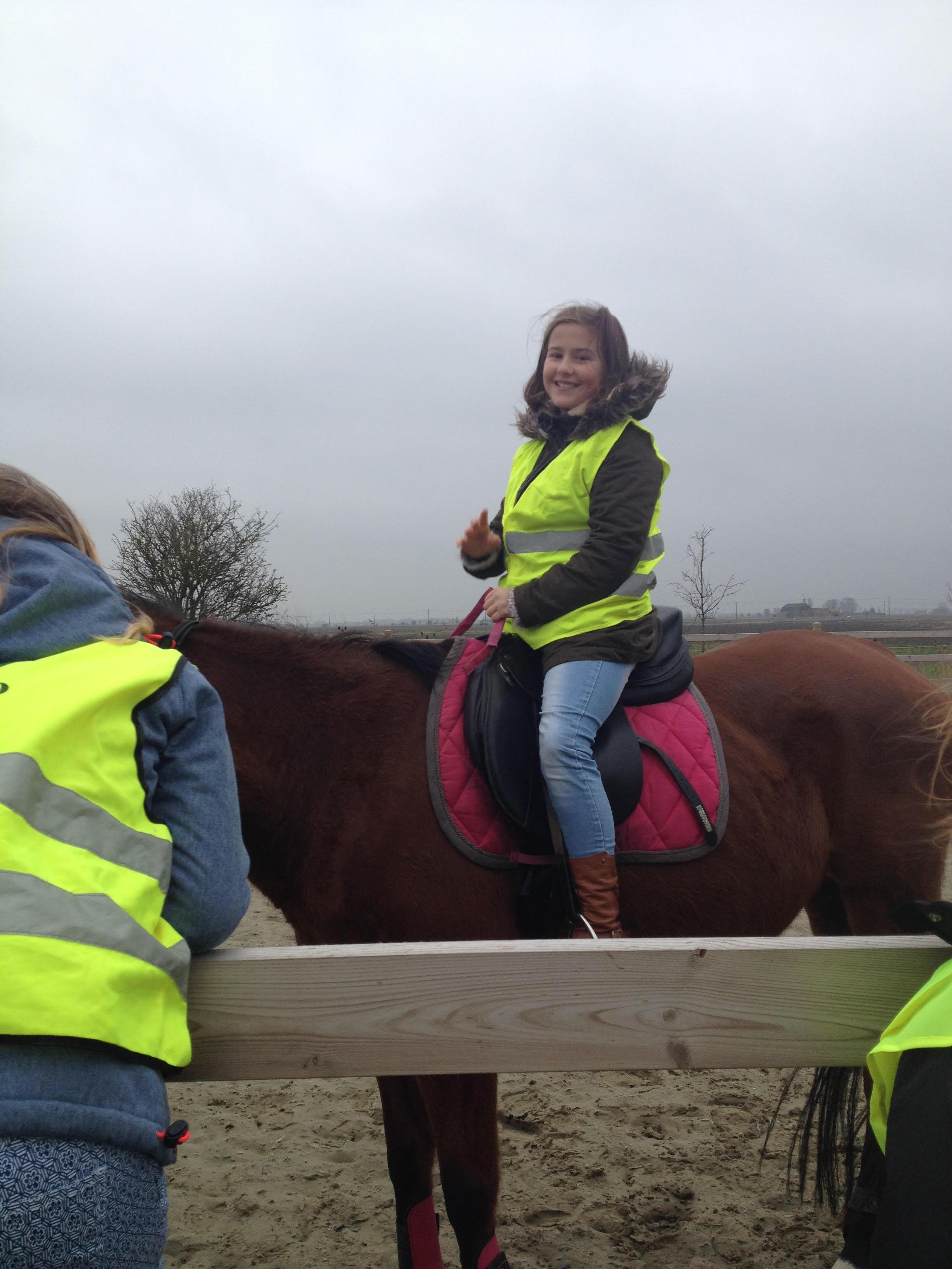 Paardrijden2