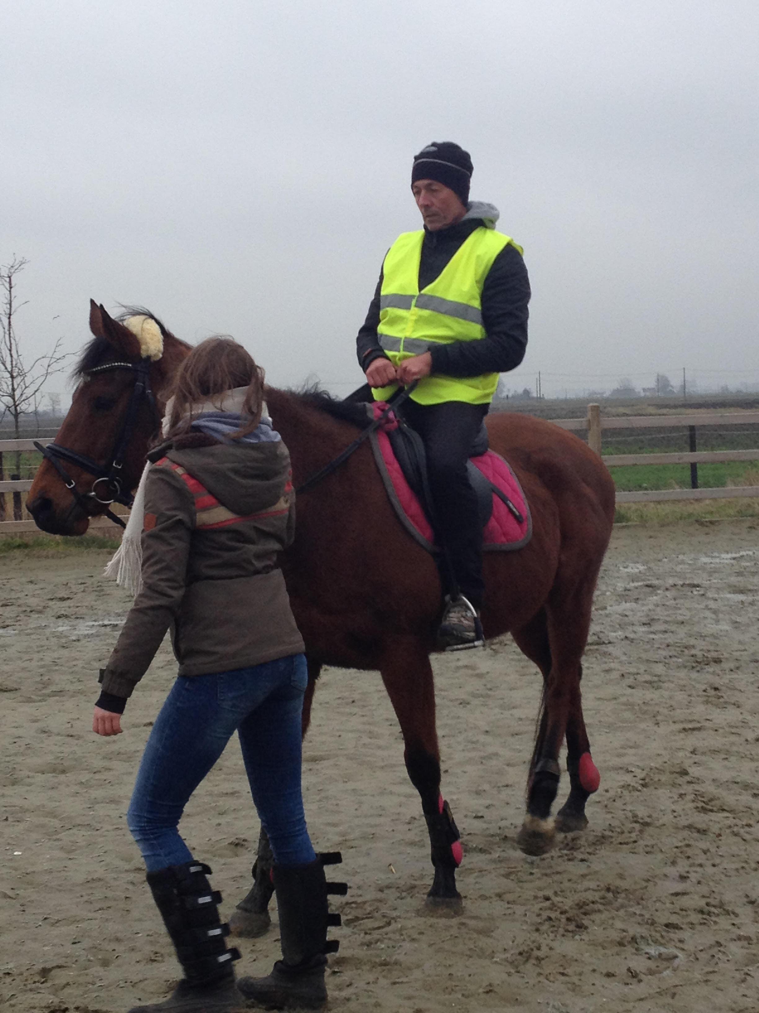 Paardrijden22