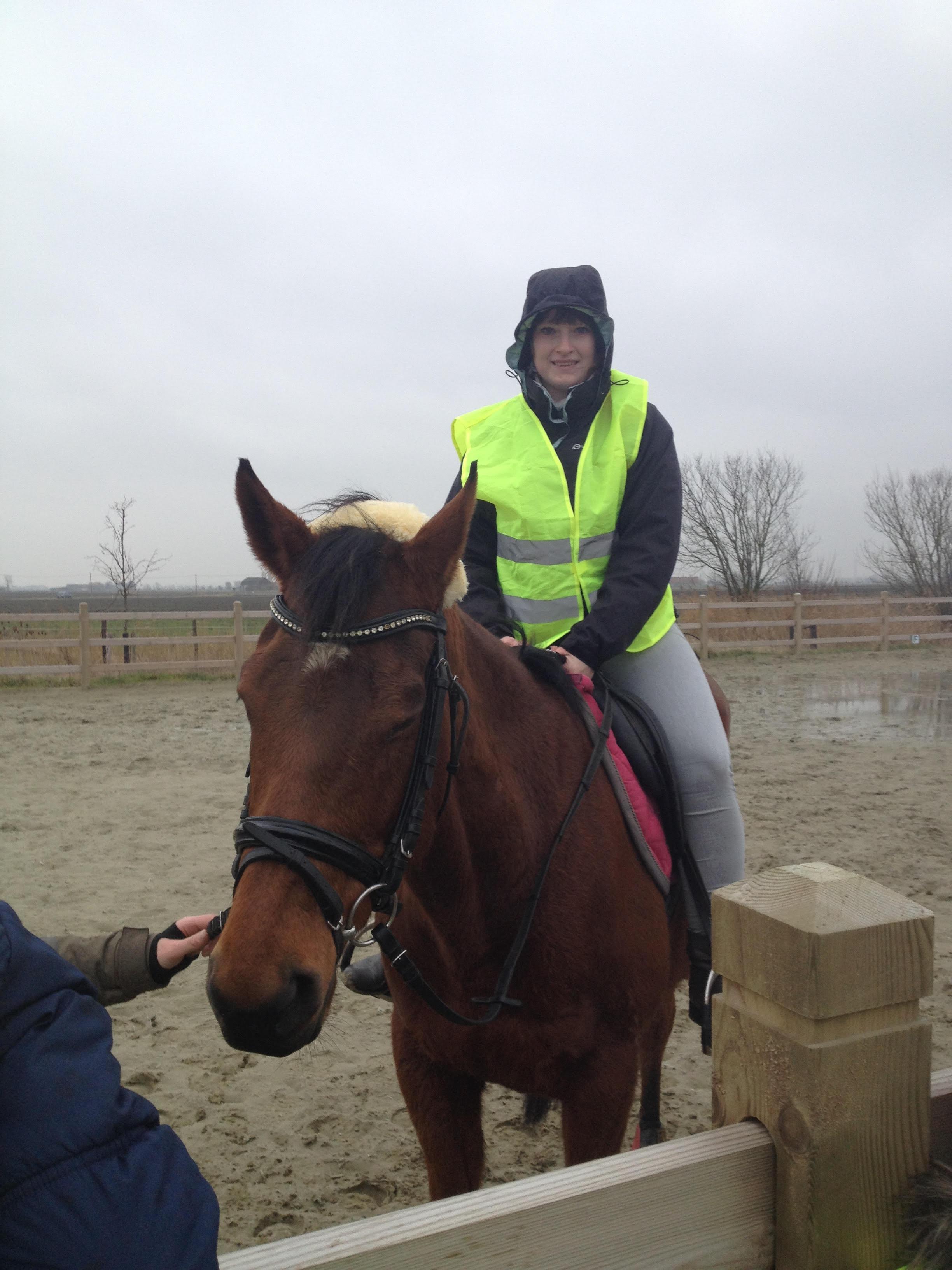 Paardrijden24